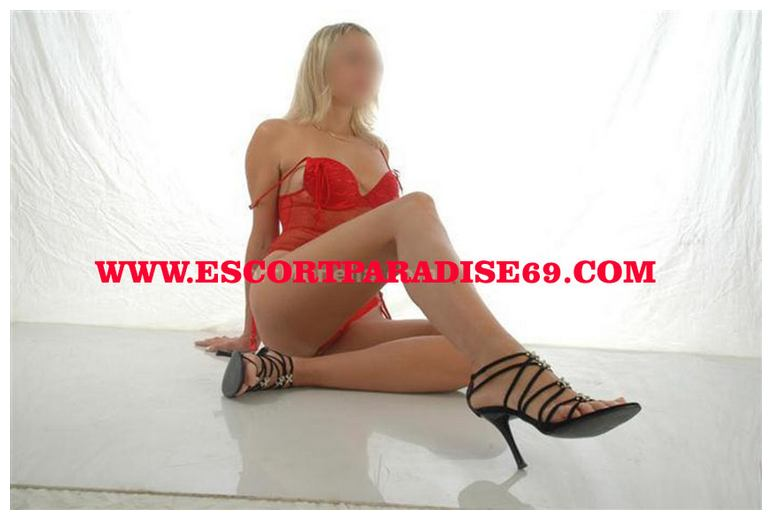 gay escort parma escorts italia