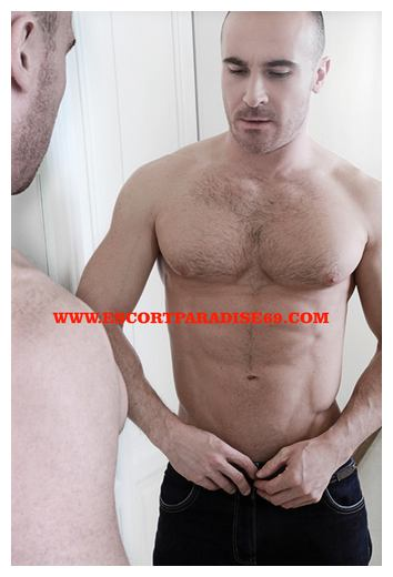 gay escort in milan car sex lodi