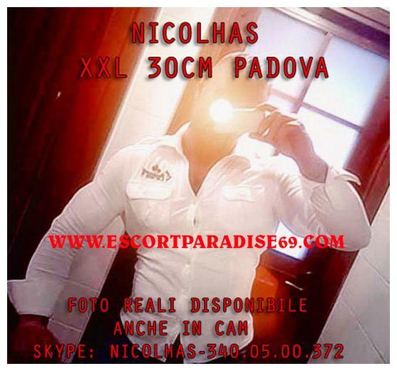 nicolhas02