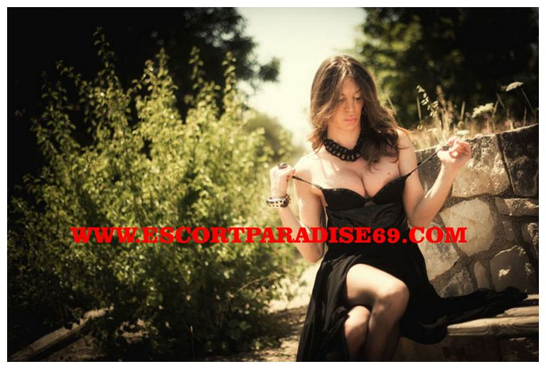 escortforum terni top escort